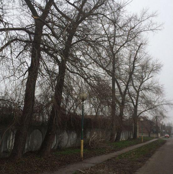 Podunajské Biskupice-