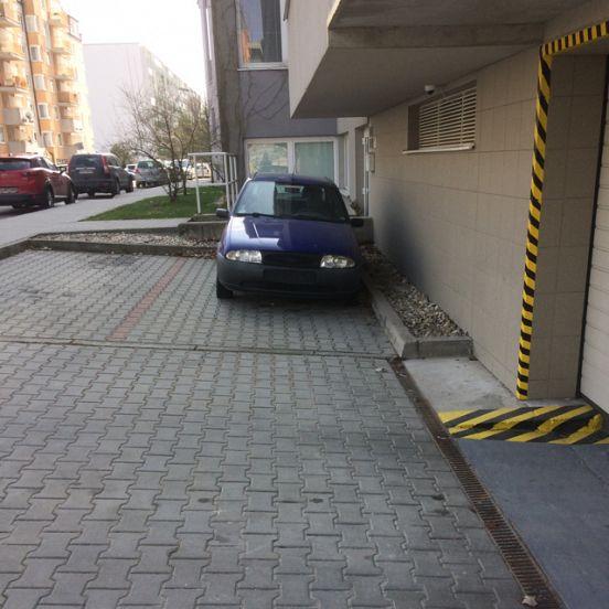 Karlova Ves-