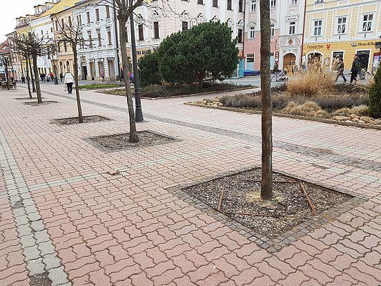 Centrum-
